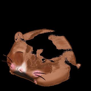 Adopte un(e) Hamster Crème