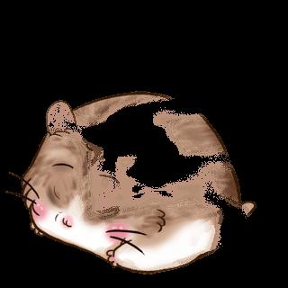 Hamster Douceur