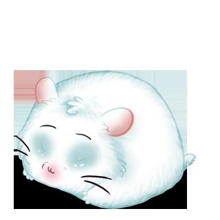 Adopte un(e) Hamster Lagon