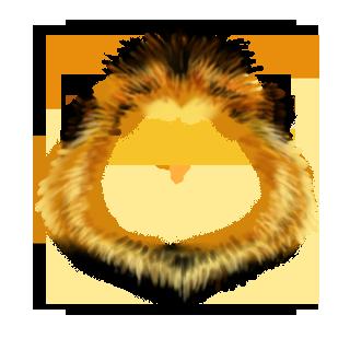 Adopte un(e) Hamster Lion