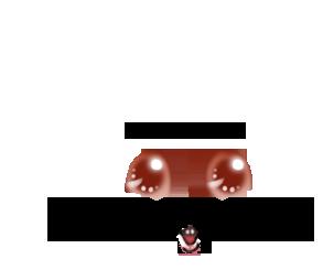 Adopte un(e) Hamster Bricou