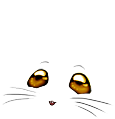 Adopte un(e) Souris Paillettes dorée