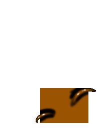 Furet Hibou