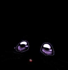 Souris Irisor
