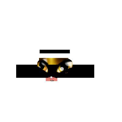 Adopte un(e) Lapin Lion