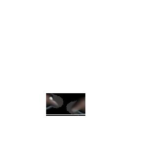 Adopte un(e) Souris Angora