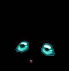 Souris Turquoise